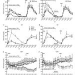 insulin periodicity